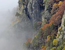 悬崖峭壁上的晨雾自然美景摄影图片