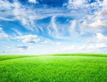 蔚蓝天空白云下的草地风光摄影图片