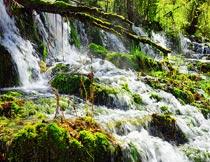 茂密树林间滔滔不绝的瀑布摄影图片