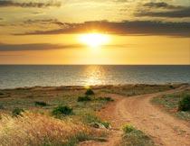 黄昏海边蜿蜒的道路与草丛摄影图片