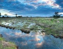 蓝天白云下的草丛河流风光摄影图片