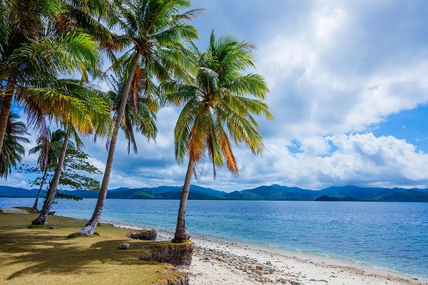风景摄影高清大图图片素材 素材描述: 蓝天白云大海椰树自然风光摄影