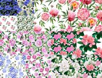 水彩风格平铺花朵图案主题矢量素材