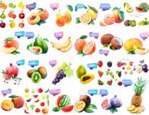 桃子西瓜等水彩瓜果主题矢量素材