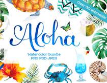 贝壳眼镜与蝴蝶等水彩元素免抠图片