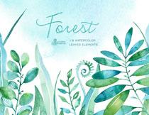 水彩风格树叶主题免抠图片素材