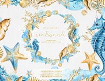 海马贝壳与海星等水彩主题免抠素材