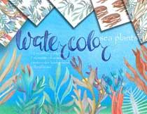 水彩手绘风格海洋植物图案背景素材