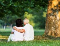 树下草地上的老年夫妇高清图片
