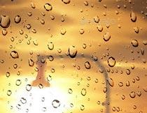 创意的雨后玻璃水滴特效PS中文版动作