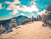 冬天阳光下的雪景摄影高清图片
