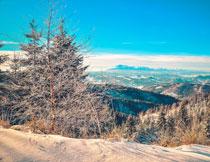蓝天山间树木风光摄影高清图片