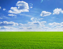 蓝天白云草地风景摄影高清图片