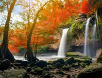 瀑布与染红的树木摄影高清图片