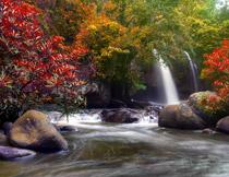 山间的瀑布树木摄影高清图片