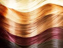 多种颜色头发特写摄影高清图片