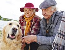 狗狗陪伴下的老人摄影高清图片