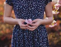 手拿一朵花的美女特写高清图片