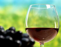 黑葡萄与酒杯微距摄影高清图片