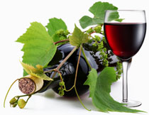 葡萄酒酒瓶与葡萄藤蔓高清图片