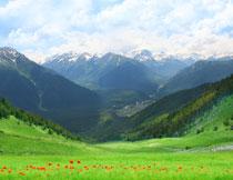 蓝天白云山峦花丛摄影高清图片