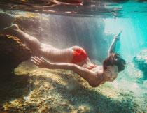 水中的性感比基尼美女高清图片