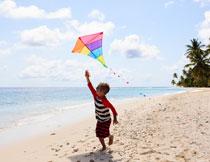 在沙滩上放风筝的男孩高清图片