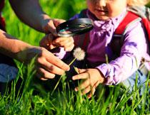 在探寻自然奥秘的女孩高清图片