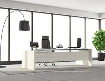 办公室内的落地灯植物高清图片