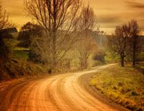 黄昏时分野外道路风光高清图片