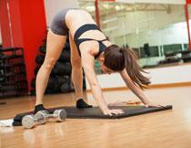 健身房的运动美女摄影高清图片