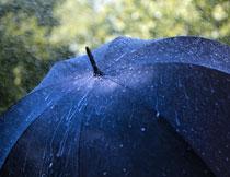 在雨中挂着水滴的雨伞高清图片