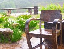 雨中的椅子与石头草丛高清图片