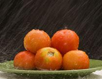 被雨水打湿的番茄摄影高清图片