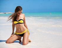 沙滩上的性感泳装美女高清图片