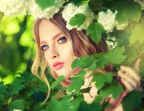 花枝映衬下的美女摄影高清图片