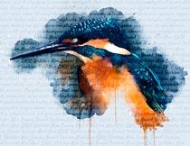 喷溅涂鸦水彩画艺术效果PS动作