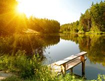 湖畔茂密树林逆光摄影高清图片