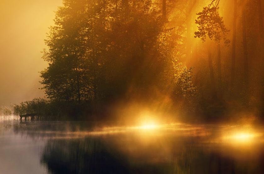 湖边树木旖旎自然风光高清图片