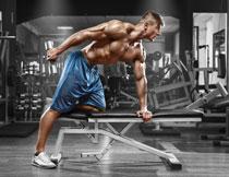 健身房的肌肉锻炼人物高清图片