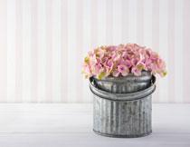 铁桶里的鲜花近景特写高清图片