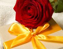 毛巾上的礼物盒与玫瑰高清图片
