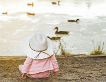 坐河边看小鸭子游水的儿童图片