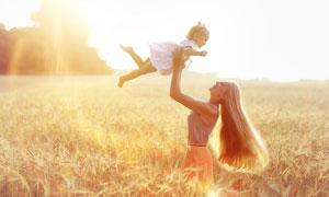 在成熟麦田里的母女俩高清图片