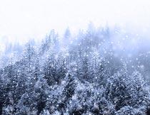 照片添加冷色雪景特效PS中文动作