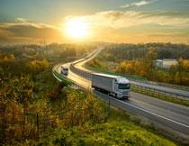 阳光树木公路上的货车高清图片