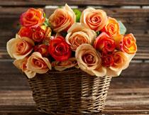 篮子里的玫瑰鲜花摄影高清图片