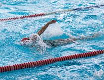 泳池中比赛的游泳人物高清图片