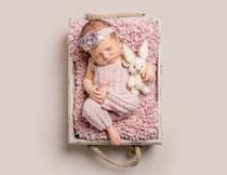 抱着小兔子玩具睡觉的宝宝图片