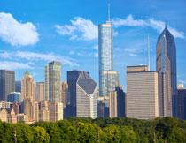 城市建筑与绿化带摄影高清图片